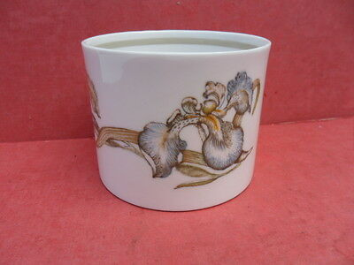 Wedgwood/Susie Cooper, vintage IRIS, Open Sugar Bowl (From the Teaset)