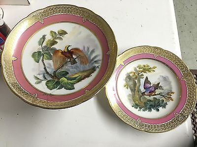 Paris Porcelain Bowl & Compote Hand Painted Ornithological Birds Gold French