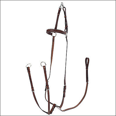 Full Light Brown Horze Adjustable Hunting Breastplate Martingale Stitched Horse