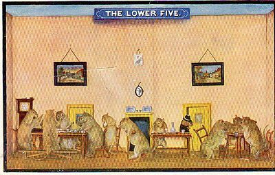 VINTAGE postcard of STUFFED ANIMALS THE RATS CLUB at BRAMBER MUSEUM taxidermy