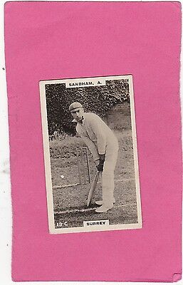 GODFREY PHILLIPS. SCARCE CRICKETERS (BROWN BACKS).No.19C.CAT £10.00. ISUED 1924
