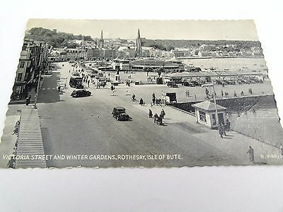 Vintage Antique Victorian Street Winter Gardens Rothesay Isle Of Bute Postcard