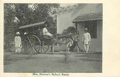 India, Miss Monroe's Bullock Bandy, Oxen Drawn Carriage, Native Clothing, UDB