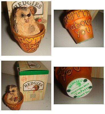 Hedgies RARE Country Artists * I'm Potty About You * Collectable Ornament BOXED