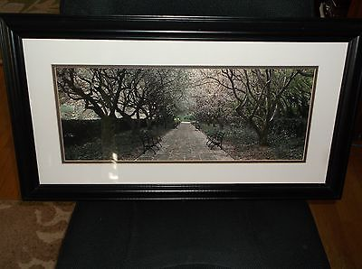 Matted & Framed Print Benches In The Park Sonoma 0244040