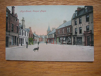 Coupar Angus High St. Royal Hotel, Strathmore Supply Stores, P/m 1905