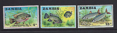 ZAMBIA 1971 Commemoratives - FISH -  Set of 3  SG 165 /167  MNH