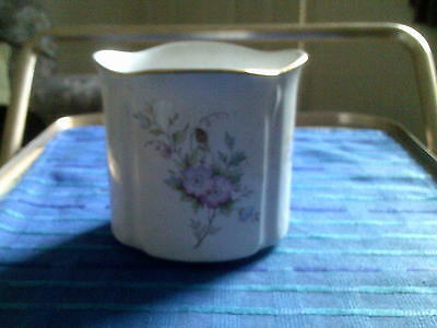 Marks And Spencer Clematis Small Pot