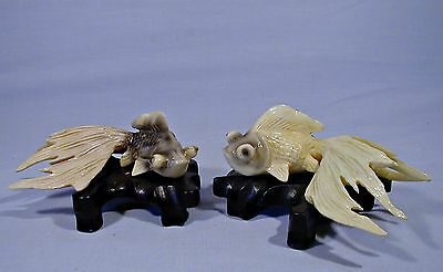 2 VINTAGE JAPANESE FANTAIL BIG EYE KOI FISH MOUNTED on HAND CARVED STANDS