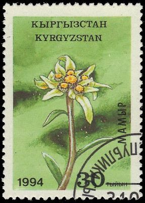 """KYRGYZSTAN 38 - Central Asian Flowers """"Narcissus"""" (pa23048)"""