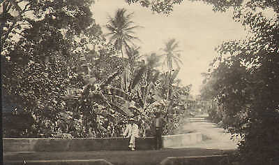 original 1925 photo -  view in tobago with people !