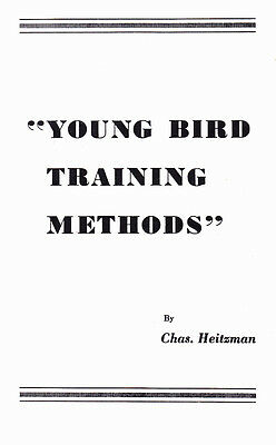 Young Bird Training Methods For Racing Pigeons~Chas. Heitzman