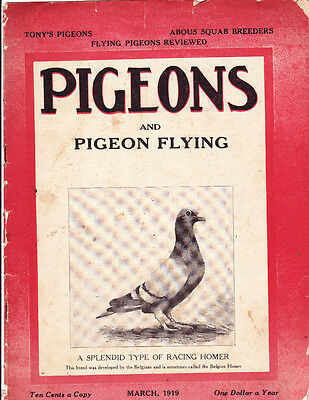 Pigeons & Pigeon Flying~March 1919~Authentic~Rare~Complete