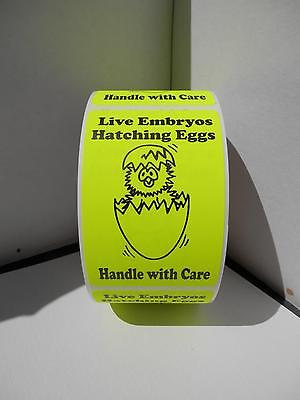 LIVE EMBRYOS HATCHING EGGS HANDLE WITH CARE chartreuse fluorescent Labels 250/rl