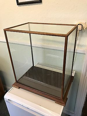 Antique / Vintage Glass Taxidermy Or Collectables Display Show Case / Cabinet