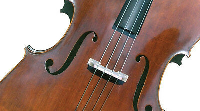 Concertante Bass Violin (Size 3/4)