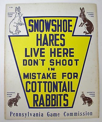 Vintage Pennsylvania Game Commission Snowshoe Hare Sign