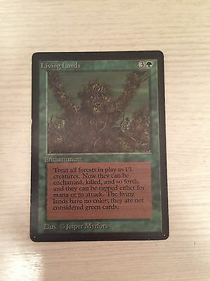 MTG Living Lands BETA Edition Excellent Condition Oldschool Magic The Gathering
