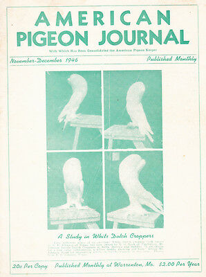 American  Pigeon Journal ~ Nov-Dec 1946 ~ Authentic ~ Exciting ~ Americana