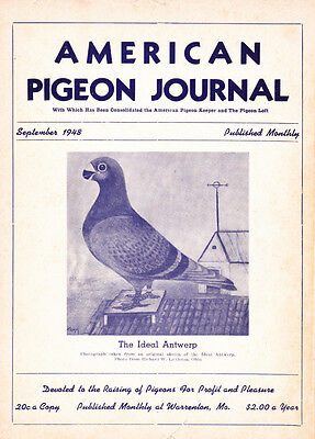 American  Pigeon Journal ~ September 1948 ` Antwerps & Komorner Tumbler