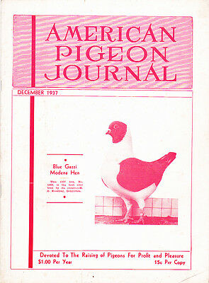 American Pigeon Journal ~ December 1937 ~ Out Of Print