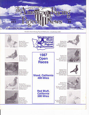 Racing Pigeons News ~ Complete 1988 Yearset ~ Fantastic Set ~ All Vg~ Wow