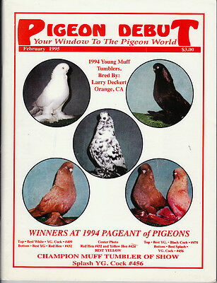 Pigeon Debut ~Long Faced Tumbler Breed Special ~ Feb 1995~Very Rare
