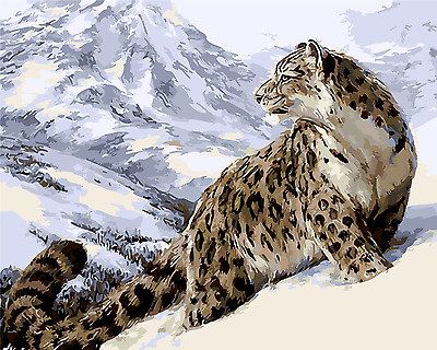 "16""x20"" Dimensions DIY Paint By Number Kit On Canvas--Snow Leopard 1215"