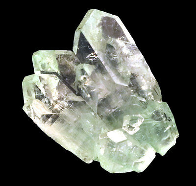 Apophyllite Crystals Rising Formation #8580