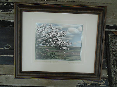 Blossoms Annapolis Valley Nova Scotia Framed Signed Wallace MacAskill NS Photo