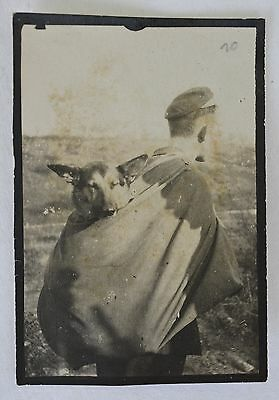 """Rare WW1 Photograph ~ Soldier With German Shepard Dog Named """"Ylka"""""""
