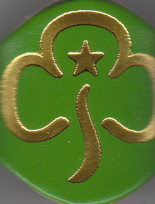 Girl Guide Large gold on green Leather WOGGLE