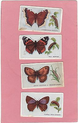 GODFREY PHILLIPS 4 DIFF. SCARCE BRITISH BUTTERFLIES No.1 ISSUE..CAT £20. ISD1911
