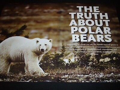 POLAR BEARS in magazineads/clipping lot ***