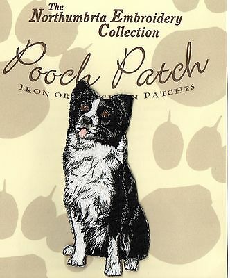 Border Collie Sitting  EMBROIDERED  Pooch Patch
