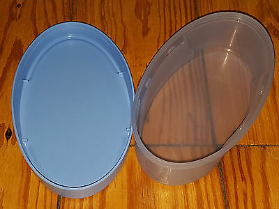 Tupperware Box 0,5l hellblau