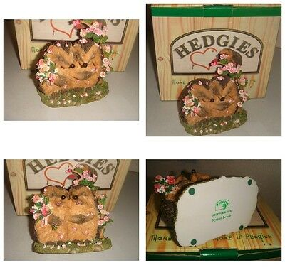 SUPER RARE Boxed Country Artists Hedgies TOGETHER FOREVER Collectable