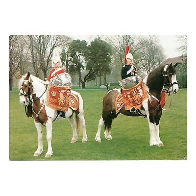 DRUM HORSES OF THE LIFE GUARDS and THE BLUES AND ROYALS in MOUNTED REVIEW ORDER