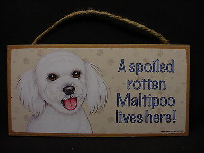MALTIPOO A Spoiled Rotten DOG ART SIGN wood HANGING indoor WALL PLAQUE puppy NEW