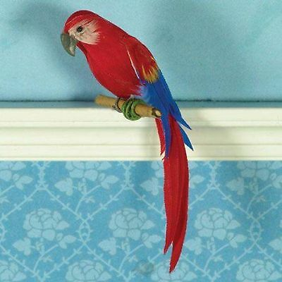 Dolls House 1/12 Scale Macaw Parrot