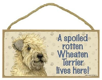 WHEATEN A Spoiled Rotten DOG wood SIGN wall PLAQUE soft coated terrier puppy NEW