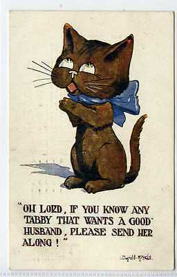(Lc6381-434) Artist Signed, Tom Cat,  If You Know Any Tabby! 1922 Used VG,