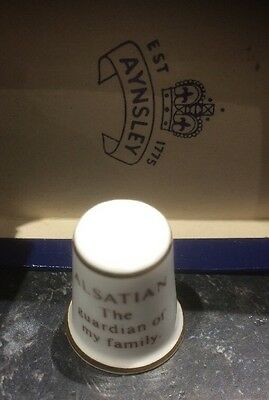 Lovely Aynsley Alsatian Thimble With Box