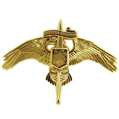 USMC Marine Corps Badge MARSOC Marine Corps Forces Special Operations Command