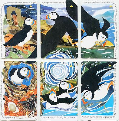 Phonecard  Puffins  Set Of 6