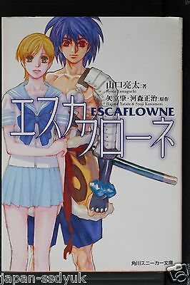 JAPAN novel: The Vision of Escaflowne (Book)