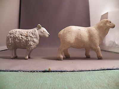 Two Different Sheep