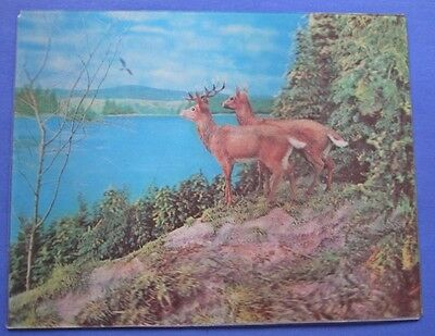 Fun Vintage 3D Illustration Of Stag and Doe