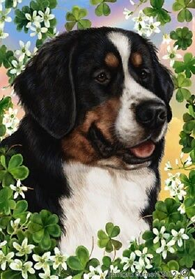 Large Indoor/Outdoor St. Patrick's Flag - Bernese Mountain Dog 31051