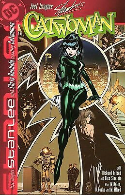 Just Imagine Stan lee with Chris Bachalo Creating CATWOMAN